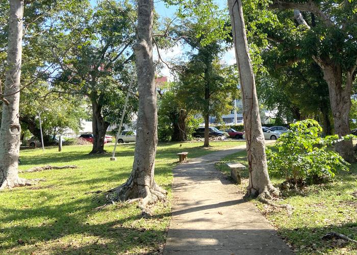 Detalle de acera en el Parque Gándara