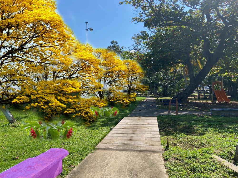 Idea para paseo de los robles. Parque Gándara