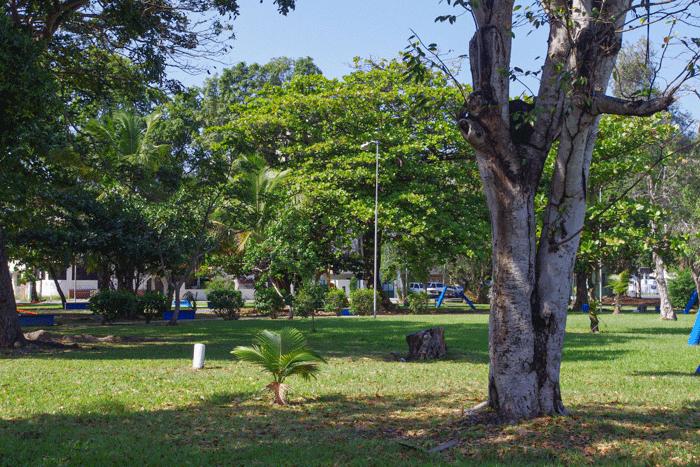 Área de parque abierto en Parque Gándara
